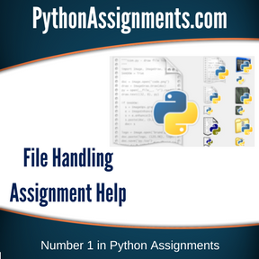 File Handling Assignment Help