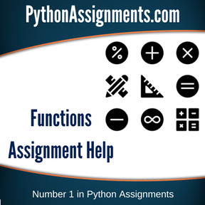 Functions Assignment Help