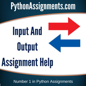 Input And Output Assignment Help